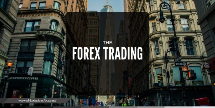 automated forex trading software work or not?