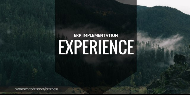 ERP IMPLEMEMNT (2)