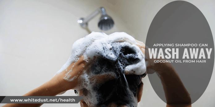 applying-shampoo can wash away oil