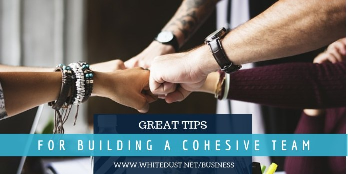 GREAT TIPS FOR BUILDING A COHESIVE TEAM