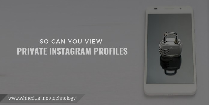 so can you view private instagram profiles