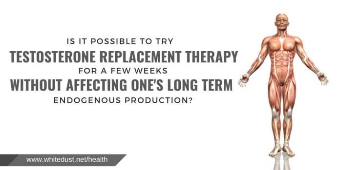 Is it possible to try testosterone replacement therapy for a few weeks without affecting one's long term endogenous production?
