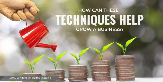 How Can These Techniques Help Grow a Business?
