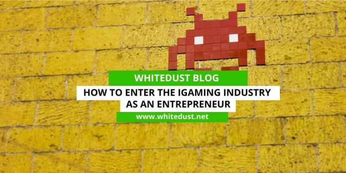 How to Enter the iGaming Industry as an Entrepreneur