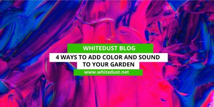 4 ways to add color and sound to your garden