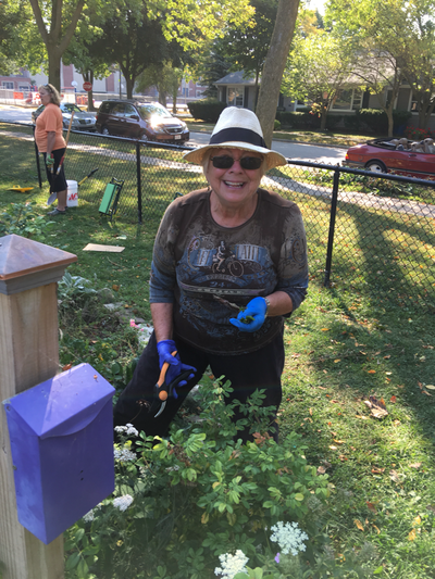 Whitefish Bay Garden Club Ongoing Projects Garden Club members have been hard at work this fall preparing the Butterfly  Garden for another Whitefish Bay winter  You can learn about the life cycle  of