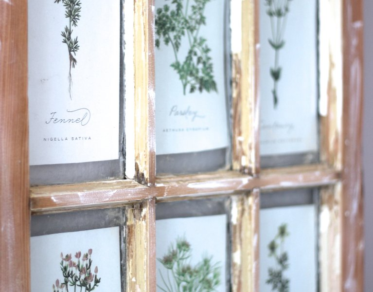Botanical Art in Old Window Frame
