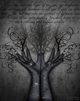 Peer Into Darkness by Heather Miller | WhiteRosesArt.com