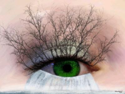 Eye of Nature (WhiteRosesArt.com)
