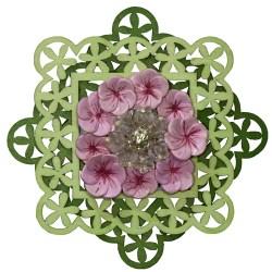 Spring Flowers (WhiteRosesArt.com)