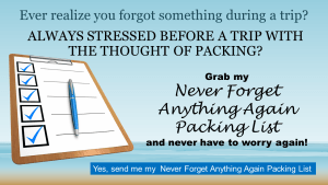 Get my free Never Forget Anything Again Packing List.