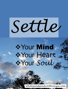 Settle. Your mind, your heart and your soul!