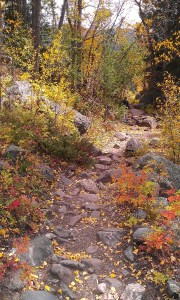 Hiking. 10 Fall things that make me Happy. What makes you happy in the fall?