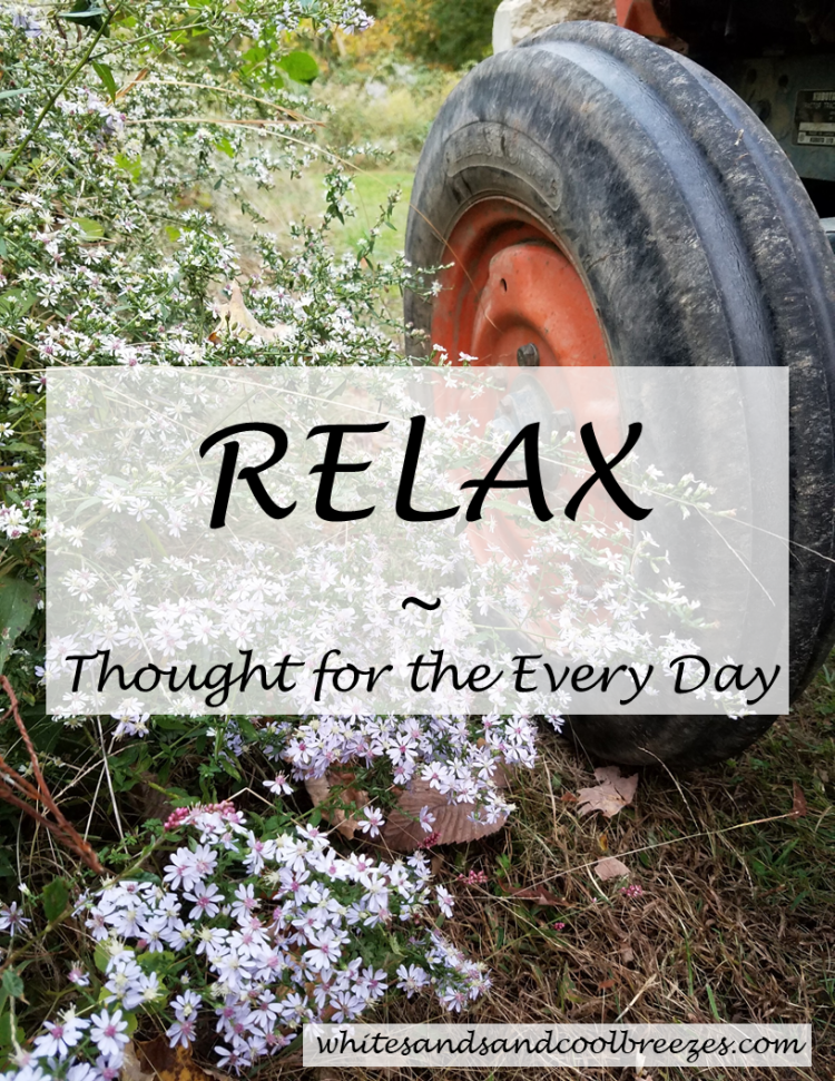 Relax- Thought for the Every Day. You've been working hard, take some time and Relax! #relax #inspiration #ThoughtForTheDay