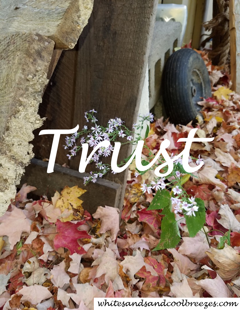 Trust – Thought for the Every Day