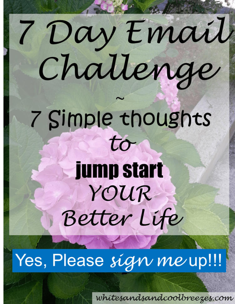 7 day email challenge - 7 Simple Thoughts to jump start YOUR better life! Looking for a way to jump start YOUR better life? Well, you're in the right place! 7 simple thoughts that will help you find and live your better life! Free email challenge. Yes, please sign me up! #better #life #change