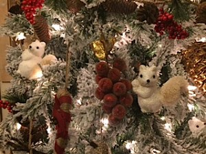 white squirrel tree_1284