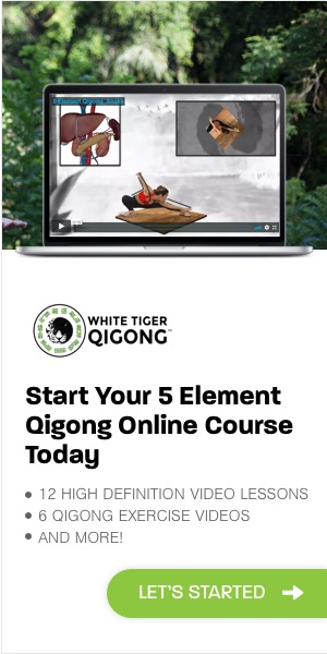5 Element Online Course