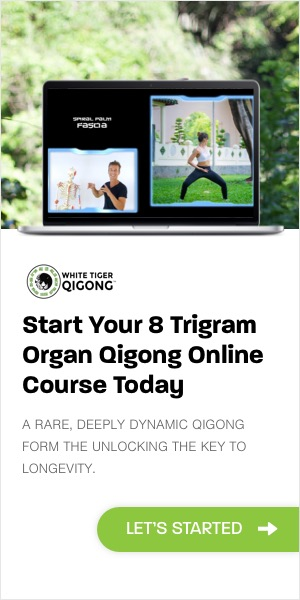 8 Trigram eBook