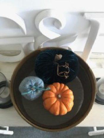 pumpkins 5 e1505806228319 225x300 - Autumn a season of natural beauty and colour