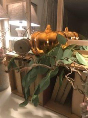 pumpkins 8 e1505806971894 225x300 - Autumn a season of natural beauty and colour