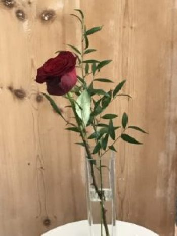 single red rose 3 e1505978784118 225x300 - The Rose - Vintage and Thrifty Styling for the Home