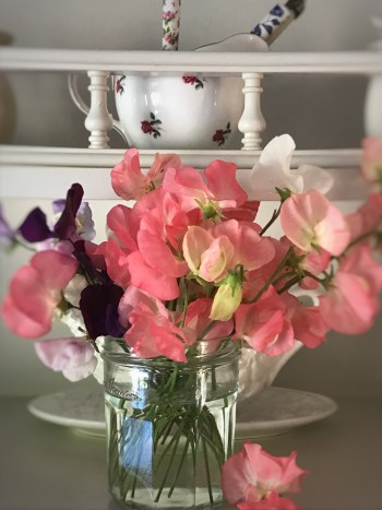 sweetpeas 1 225x300 - Flowers - Vintage and Thrifty Styling for the Home