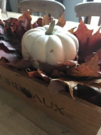 pumpkin and leaves in wooden box 1 e1508338903344 225x300 - Autumn Decor - Decorating a Mannequin and a Pumpkin Obsession