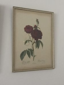 La Redoute 2 e1511191559949 225x300 - Paintings - Vintage and Thrifty Styling for the Home