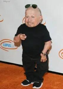 Mini-Me Austin Powers actor Verne Troyer dies aged 49 2