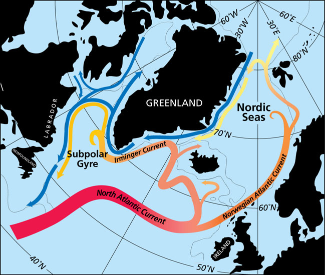Arctic subpolar currents