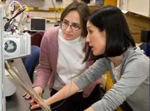 Liz Kujawinski, standing, and colleague Melissa Kido Soule work on oil dispersant study in Kujawinski's lab.