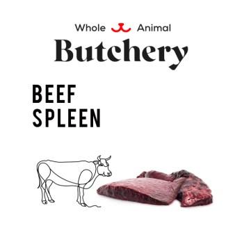 Beef Spleen