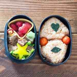 Bento-Box-small-1024x1024