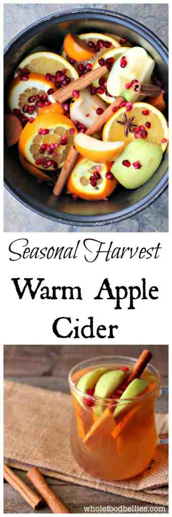 Seasonal Harvest Warm Apple Cider. Pop everything into the slow cooker and enjoy a delicious and seasonal drink with friends. #cider #slowcooker #Fall #seasonal #fromscratch