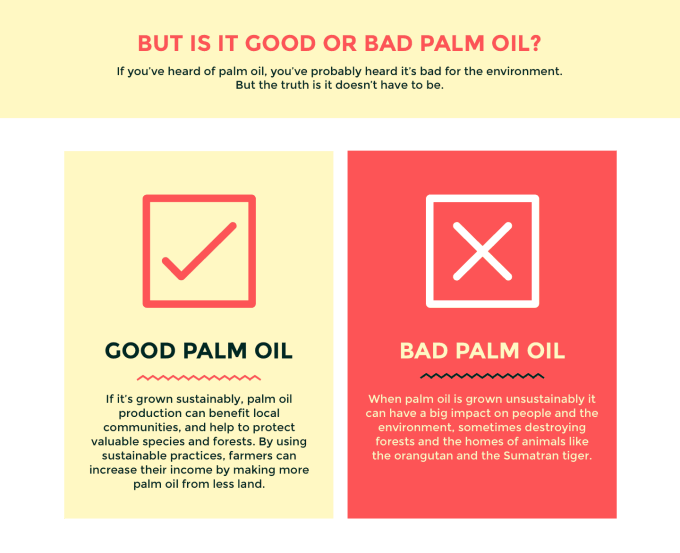 what's in your food: sustainable palm oil