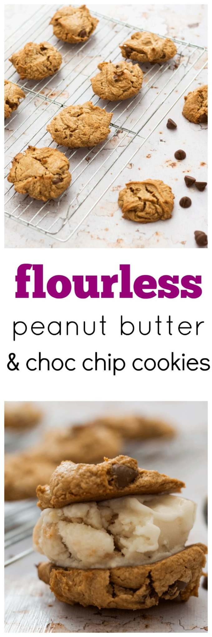 Don't let the flourless aspect put you off. These Truly Flourless Peanut Butter Chocolate Chip Cookies are EPIC!! Only 5 ingredients and minimal preparation is required for soft and gooey peanut buttery goodness.
