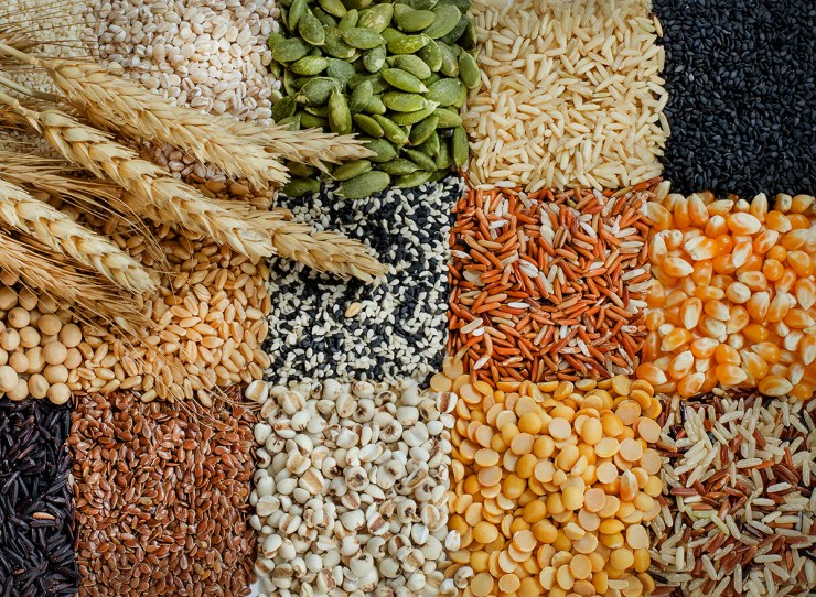 different types of grain