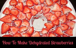 It's Easy Peasy To Make Dehydrated Strawberries