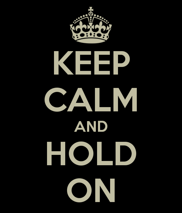 Cover Image Credit Www Wholeheartedleaders Com Wp Content Uploads 2013 12 Hold On Png
