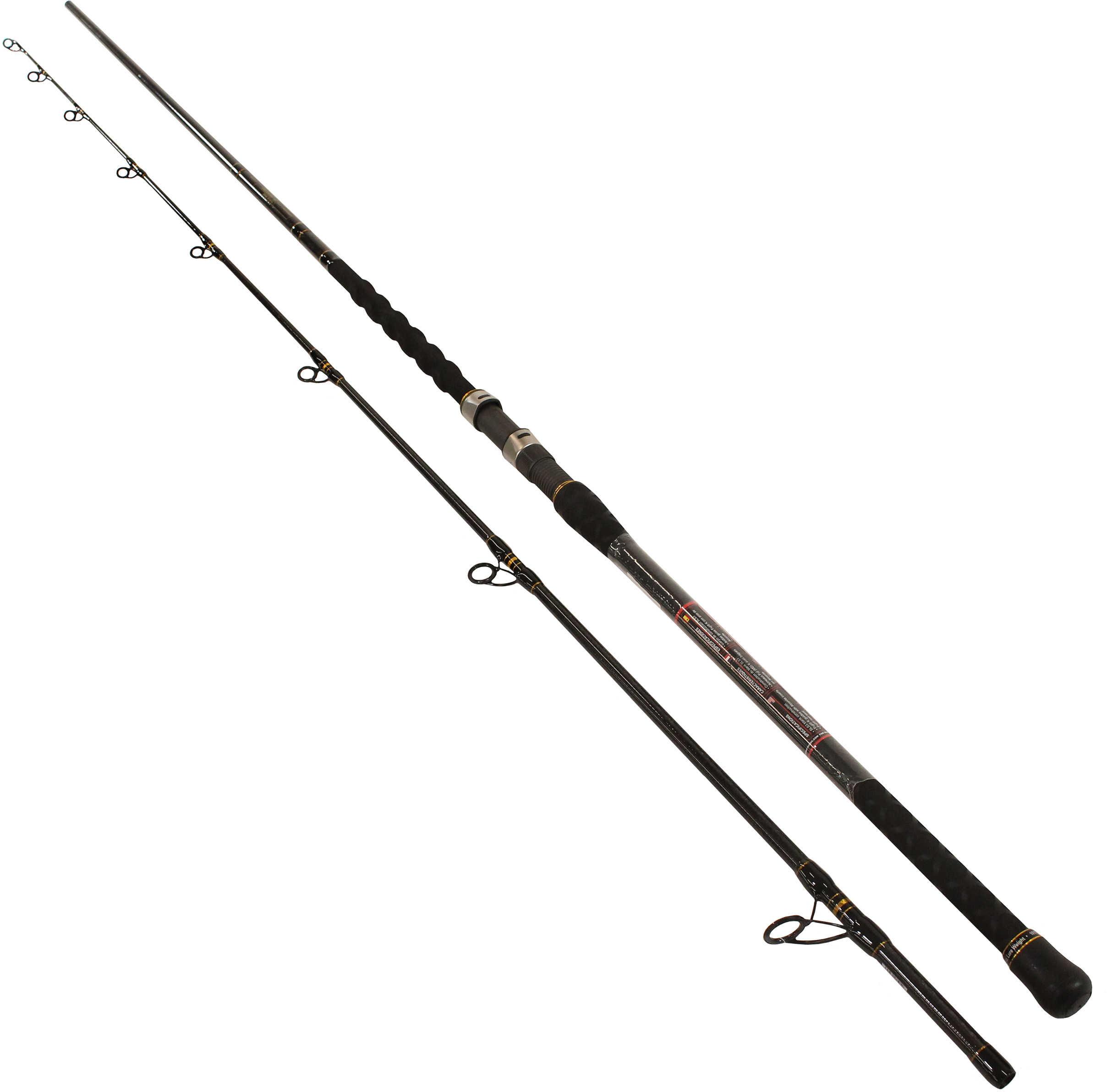 Penn Carnage Ii Surf Spinning Rod 10 Length 2 Piece Rod