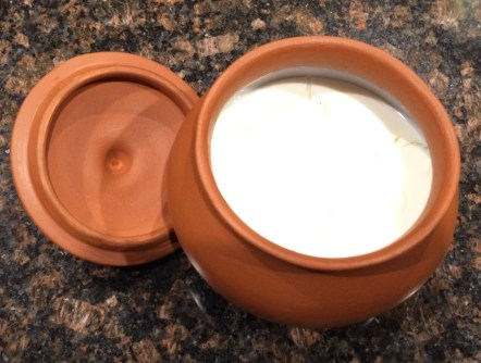 clay pot yogurt dahi curd