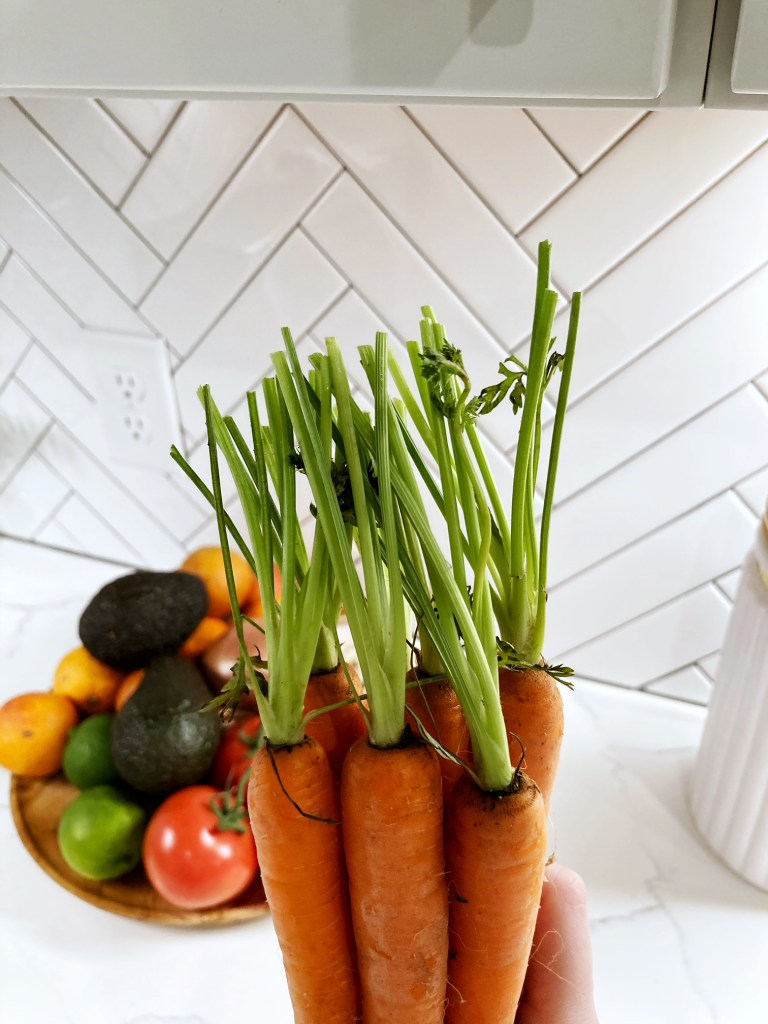 bunch of carrots with carrot tops