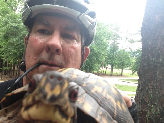 Tarleton saving a turtle from the road while on a bike ride