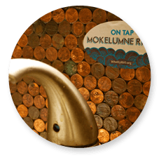 Wholly H2O: What's on Tap Campaign Logo