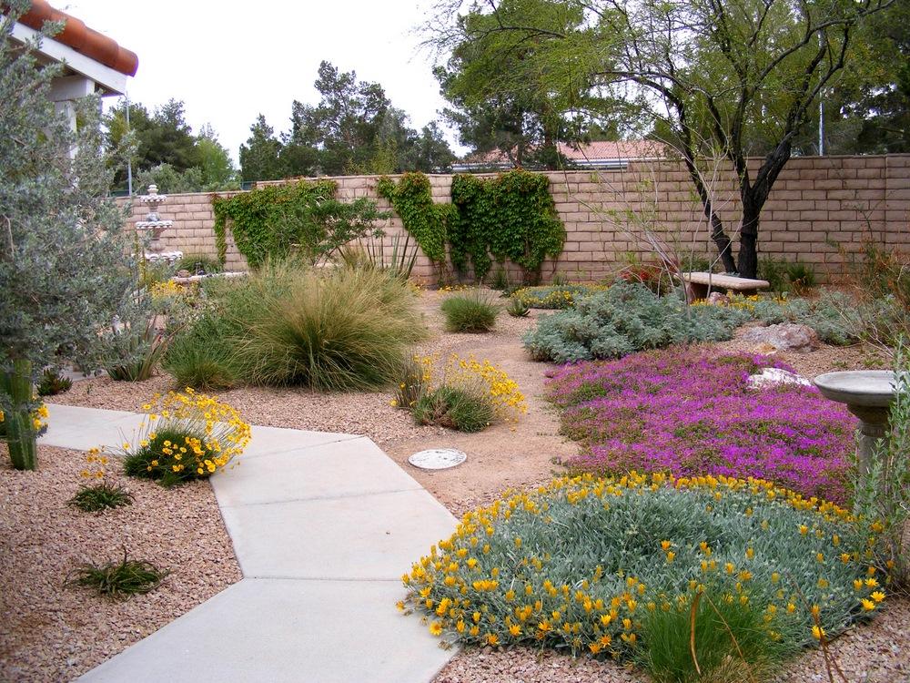 Front Yard Landscaping Ideas Las Vegas
