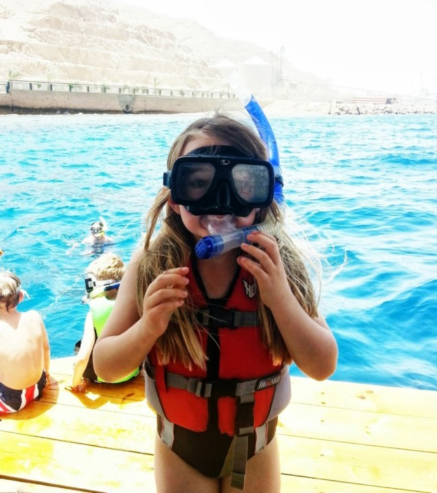 snorkelling in the red sea