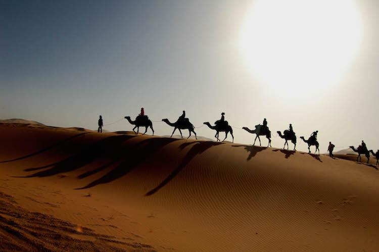 camel trek dubai