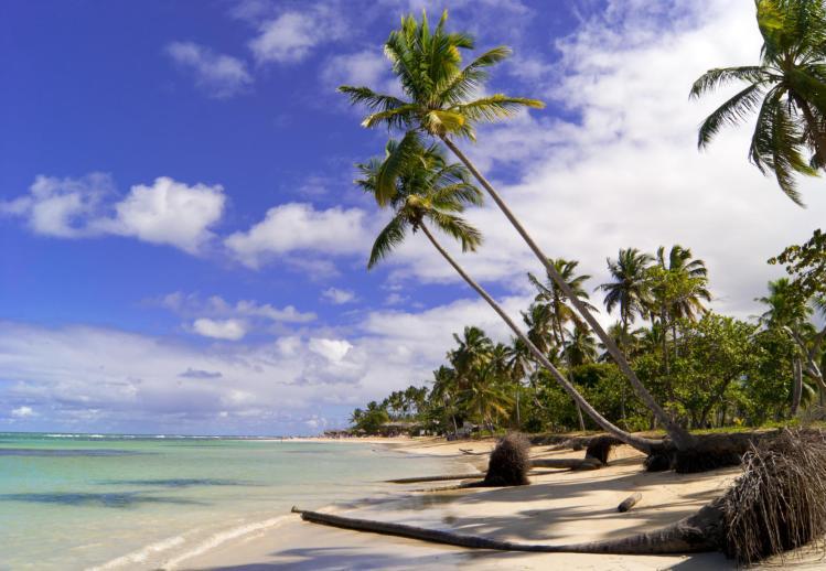 Grand Bahia Principe Samana Review