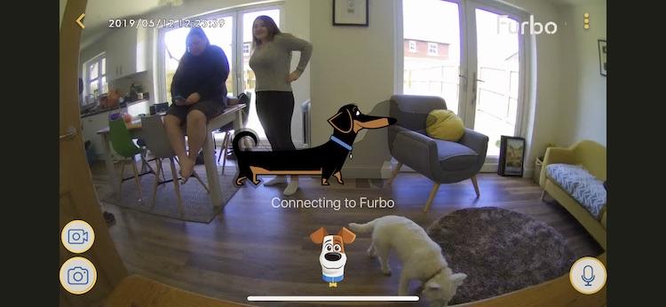 Furbo review